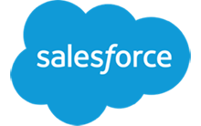 Expert Salesforce Consultants