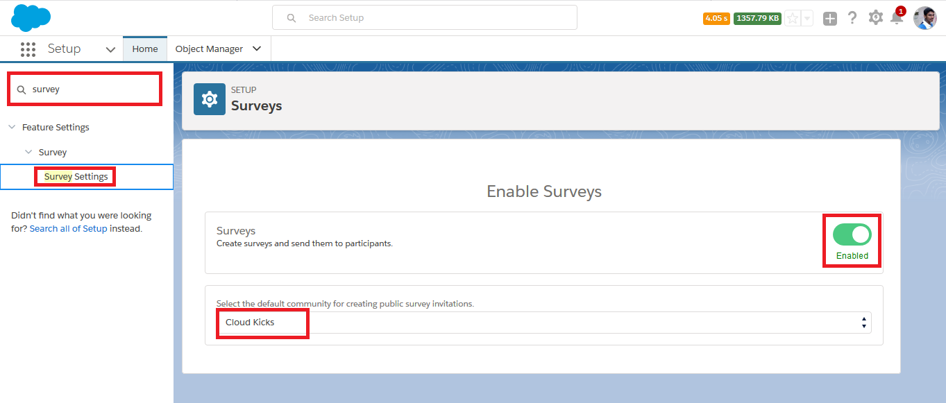 Survey in Salesforce